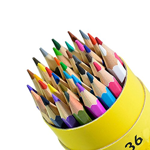 Colored Pencils ,Drawing Colouring Pencil with Box for Adults 36 Colors (36 Colors)