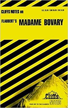 Essay topic: links between Madame Bovary and The Great Gatsby?