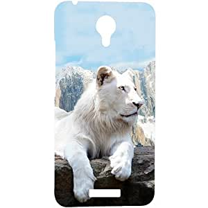 Casotec Snow Lion Design Hard Back Case Cover for Micromax Canvas Spark Q380