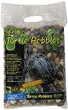 Exo Terra Turtle Pebbles 4