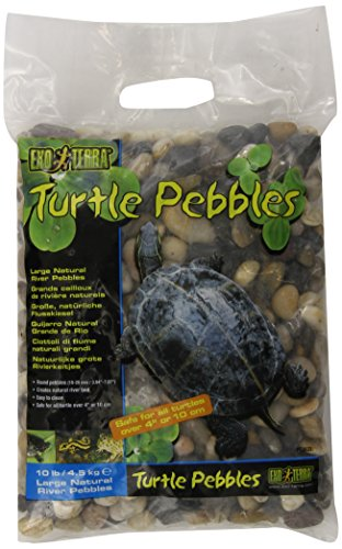 Exo Terra Turtle Pebbles, Large (Frog Tank Accessories compare prices)