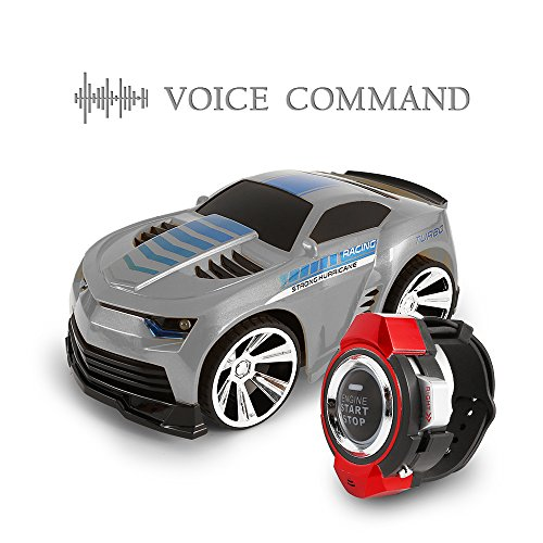 SainSmart Jr. VC-02 Voice Command Car, Rechargeable Radio Control by Smart Watch, Creative Voice-activated RC Car, Dazzling Headlights and Cool Brakes, Grey (Demo Derby Cars compare prices)