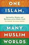 One Islam, Many Muslim Worlds: Spirit...