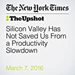 Silicon Valley Has Not Saved Us From a Productivity Slowdown | Tyler Cowen
