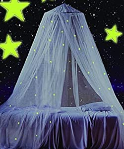 Glow in the dark canopy bed netting for - Canopy bed ideas for adults ...