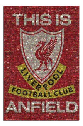Liverpool FC Mosaic Poster Gloss Laminated