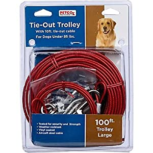 Dog Tie Out Trolley Bing Images