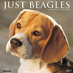 Just Beagles 2017 Wall Calendar Dog Breed Calendars