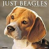 Just Beagles 2017 Wall Calendar (Dog Breed Calendars)