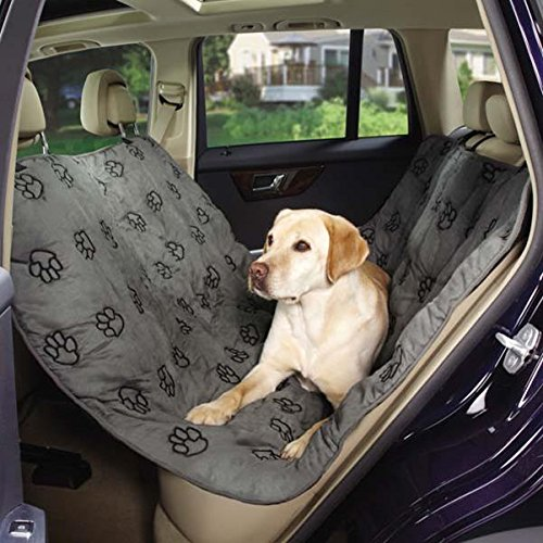 Pet Gear Car Seat front-398551