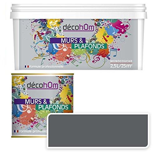 decohom-634154062357-peinture-murale-monocouche-25-l-satin-gris