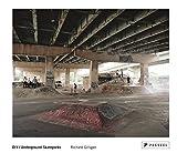 img - for Richard Gilligan: DIY/Underground Skateparks book / textbook / text book
