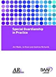Jim Wade Special Guardianship in Practice