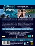 Image de Life-das Wunder Leben.Vol.1 Ltd.Steelbook [Blu-ray] [Import allemand]