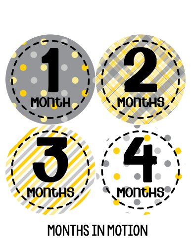 Months in Motion 275 Monthly Baby Stickers Gender Neutral Months 1-12 - 1