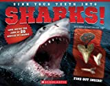 img - for Sink Your Teeth Into Sharks! book / textbook / text book