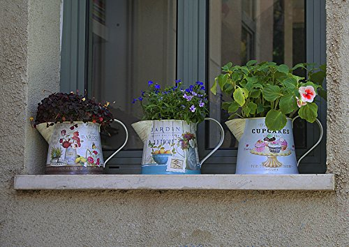 Janazala Small Flower Pots Indoor Decorative, Indoor Flower Pots, Set of 3 (Metal, Colorful) 3