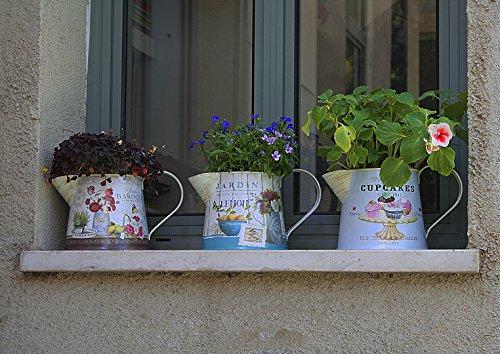 Janazala Small Flower Pots Indoor Decorative, Indoor Flower Pots, Set of 3 (Metal, Colorful) 3