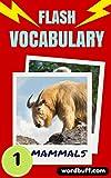 Flash Vocabulary Builder #1: 101 Mammals (Flash Vocabulary Builders)