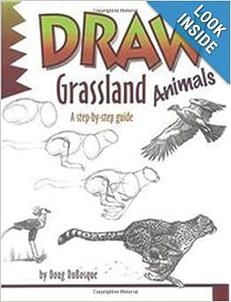 Learn To Draw Grassland Animals 809