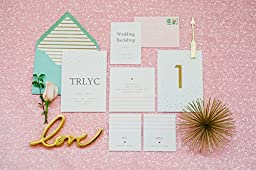 TRLYC 6FT*6FT Blush Pink Backdrop, Photo Booth Backdrop, Blush Pink Backdrop, Pink Sequin Backdrop, Wedding Backdrop, pink Backdrop