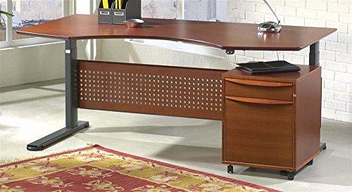 Adjustable Desk (Medium)