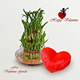 Exotic Green Beautiful 3 Layer Bamboo Valentine Day Special-2