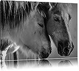 deux chevaux d'amour