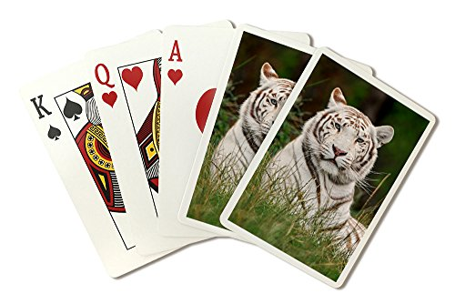 White Tiger in Grass (Playing Card Deck - 52 Card Poker Size with Jokers)