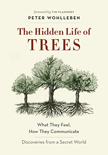 the-hidden-life-of-trees-what-they-feel-how-they-communicate-discoveries-from-a-secret-world