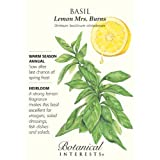 Basil Lemon Mrs. Burns Heirloom Seeds 400 Seeds