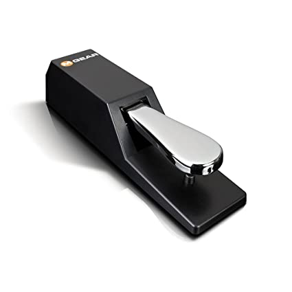 M-Audio SP-2 Sustain Pedal with Piano Style Action