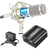 Neewer NW-800 Professional Condenser Microphone (Blue and Silver) and 48V Phantom Power (Black) Kit with Mic Shock Mount, XLR Audio Cable for Home Studio Sound Recording, Podcasting, Youtube Video