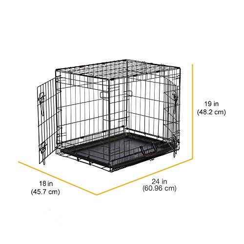 Amazonbasics Double Door Folding Metal Dog Crate Review