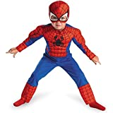 The Amazing Spider-Man Toddler Muscle Suit Boys Marvel Costume