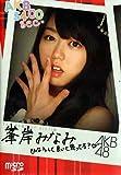 AKB48 5400sec.microSD VOL.10:峯岸みなみ
