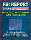 img - for FBI Report: National Gang Threat Assessment (NGTA) Emerging Trends - Street Gangs, Drug Cartels, Regional and State Breakdowns, Expansion of Non-Traditional Gangs book / textbook / text book
