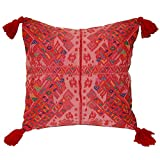 Laura Luna Textiles LL13A-239 Clochi Pillow, 20-Inch by 20-Inch