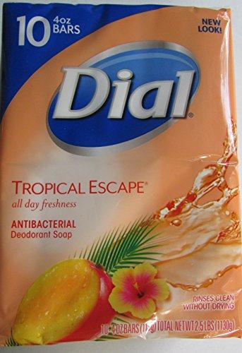 dial-tropical-escape-antibacterial-deodorant-bar-soap-4-oz-10-count