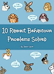 10 Rabbit Behaviour Problems Solved