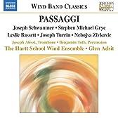 パッセージ〜吹奏楽のための音楽/ジヴコヴィチ:地球の中心からのおとぎ話/シュワントナー:反動