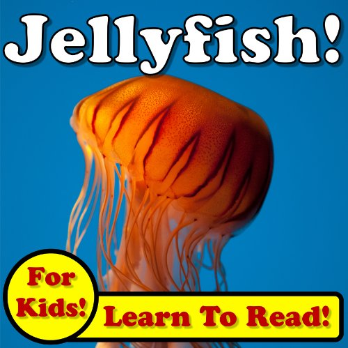 Jellyfish! Learn About Jellyfish While Learning To Read - Jellyfish Photos And Facts Make It Easy! (Over 45+ Photos of Jellyfish)