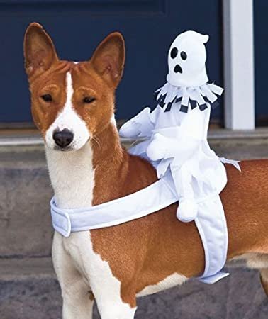 ghost costume for dogs