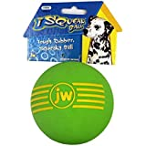 JW Pet Company iSqueak Ball Rubber Dog Toy, Large, Colors Vary