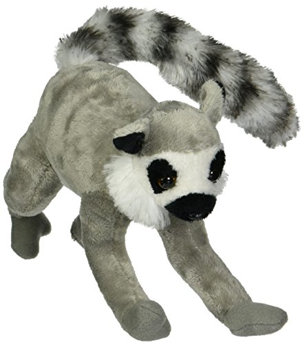 Wild Life Artist Ring Tail Lemur