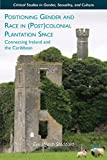 Positioning Gender and Race in (Post)colonial Plantation Space: Connecting Ireland and the Caribbean (Critical Studies in Gender, Sexuality, and Culture)