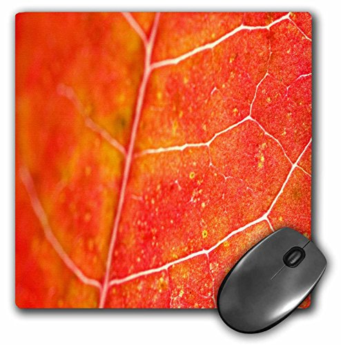 Yves Creations Colorful Leaves - Orange Leaf - MousePad (mp_36747_1)