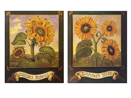 Garden Sunflower Wall Decor : Garden art prints home kitchen wall decor sunflowers