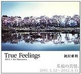 True Feelings―爪痕の真情。 2011.3.12~2012.3.11