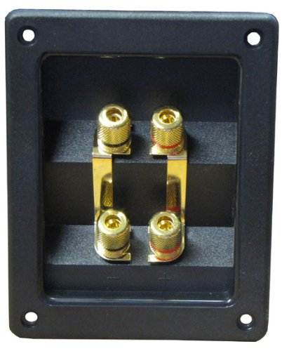 R/T - Professional Speaker Terminal Block With Gold Banana Plug Binding Posts